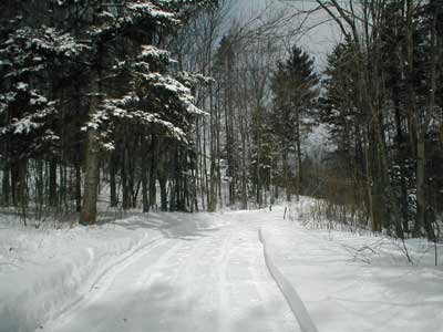 view up driveway to house in winter
